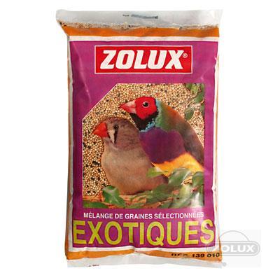 Oiseaux exotiques - Graine de piment oiseau ...
